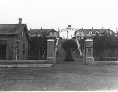 Barrio Reina Victoria (Barrio Inglés)